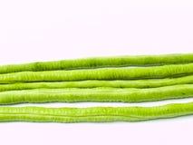 Yardlong豆,豇豆unguiculata子空间。 sesquipedalis,被隔绝 免版税库存照片