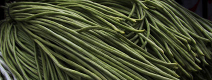 Yardlong bean, bora, bodi, long-podded cowpea, asparagus bean, pea bean, snake bean, or Chinese long bean. Bunch of Vigna unguiculata subsp. sesquipedalis Stock Photo
