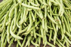Yardlong bean. Ju-roku sasage, sesquipedalis Royalty Free Stock Photos