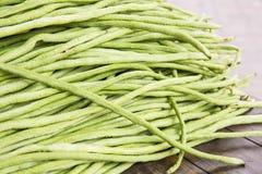 Yardlong bean. Ju-roku sasage, sesquipedalis Royalty Free Stock Image