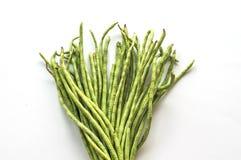 Yardlong bean Stock Image