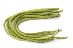 Yardlong bean  Royalty Free Stock Image