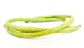 Yardlong bean with white background. For raw material Royalty Free Stock Photo