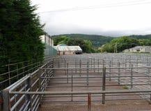 Yards courants, bétail, vides Image stock