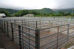 Yards courants, bétail, vides Images libres de droits