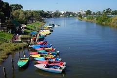 Yarkon flod Royaltyfria Bilder