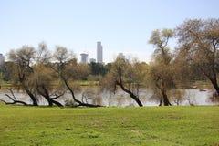 Yarkon river Royalty Free Stock Image