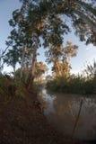 Yarkon river in Israel Royalty Free Stock Images