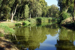 Yarkon river Royalty Free Stock Photography