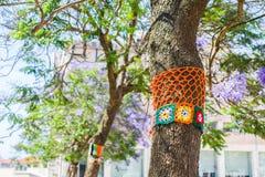 Yarn bombing in a tree. European park. Stock Photo