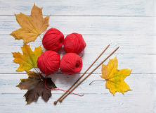 Yarn, knitting needles and yellow leaves are on white desk. Red yarn, wooden knitting needles and yellow leaves are on white vintage wooden desk with place for Stock Photography