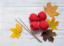 Yarn, knitting needles and yellow leaves are on white desk. Red yarn, wooden knitting needles and yellow leaves are on white vintage wooden desk with place for Royalty Free Stock Image