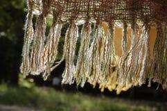 Yarn scarf in daylight Royalty Free Stock Photo