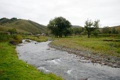 Ο ποταμός Yarovka βουνών στο χωριό Generalka του εδάφους Altai Δυτική Σιβηρία r στοκ εικόνες