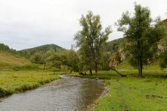 Ο ποταμός Yarovka βουνών στο χωριό Generalka του εδάφους Altai Δυτική Σιβηρία r στοκ φωτογραφίες