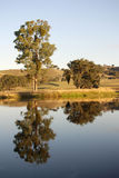 yarra долины Стоковое фото RF
