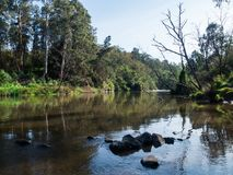 Yarra-Fluss, der die Stadtrandsiedlung von Warrandyte in Australien durchfließt stockbild