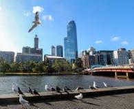 Yarra Fluss, Melbourne stockbilder