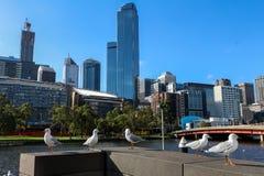 Yarra Fluss, Melbourne lizenzfreie stockbilder