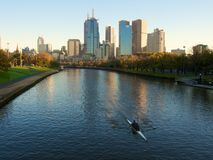 Yarra river rowers Royalty Free Stock Image