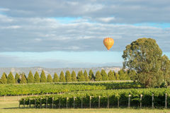 Yarra Valley, Australia Royalty Free Stock Photography