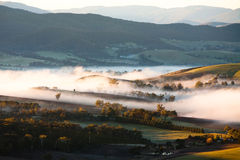 Yarra Valley Fog at Sunrise Royalty Free Stock Photography