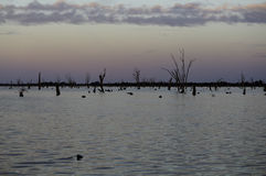 Yarrawonga. Lake Mulwala, NSW Australia Royalty Free Stock Photo