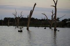 Yarrawonga. Lake Mulwala, NSW Australia Royalty Free Stock Image