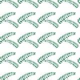 Yarrow Achilea Hand drawn leaves vector illustration. Seamless pattern Stock Image