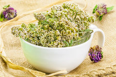 Yarrow in bowl on rustic jute fabric Stock Image
