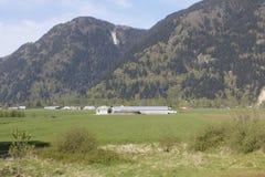 Yarrow Farming Community Royalty Free Stock Photography