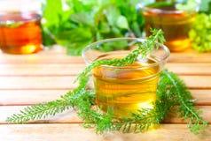 Yarrow herbal tea. And collected medicinal herbs Royalty Free Stock Photo