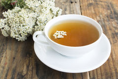 Yarrow Tea, Achillea Millefolium. On a Rustic Wooden Background royalty free stock photos