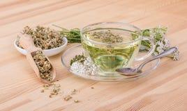 Yarrow tea Royalty Free Stock Image