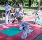 利沃夫州,乌克兰- 2015年7月:Yarych街道费斯特2015年 户外示范锻炼在公园孩子和他们的老师taekwon 库存图片