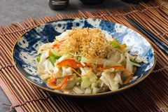 Yasai, japanese stir fry mixed vegetables. On table stock image