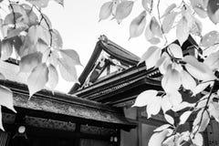 Yasaka Shrine Honden View in black and white filtered through backlit leaves in Kyoto. Yasaka Shrine Honden View at the back in black and white seen through royalty free stock image