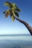 Yasawa海岛-斐济-南太平洋 免版税库存照片