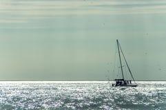 Yate de la navegación en la bahía del mar foto de archivo libre de regalías