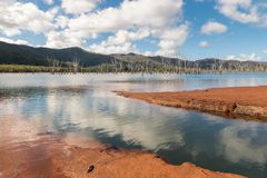Yate Lake with drowned forest in Blue River National Park in New Caledonia. Yate Lake with drowned forest in Blue River National Park, New Caledonia stock image