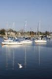 Yates en puerto Foto de archivo
