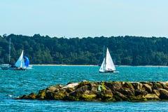 Yates hermosos en la bahía, navegando en el océano, cielo claro, Fotos de archivo libres de regalías