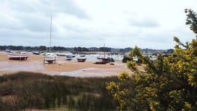 Yates y barcos durante una marea baja del océano almacen de metraje de vídeo