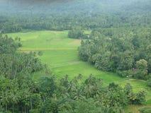 Yatigaloluwa-Σρι Λάνκα Στοκ Εικόνες