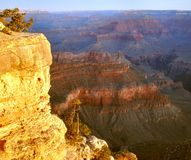 Yavapai Point, Grand Canyon Royalty Free Stock Photo