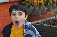 Yawning Boy Royalty Free Stock Photos