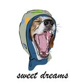 The yawning dog in a hood royalty free illustration
