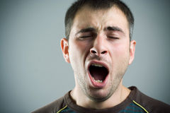 Yawning young man. Royalty Free Stock Images