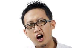 Yawns. Royalty Free Stock Photos