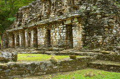 Yaxchilan Stock Photo